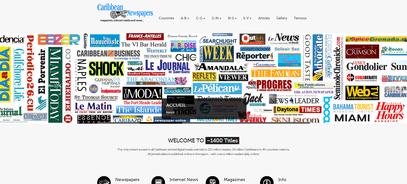 Newspapers_02 (new website)
